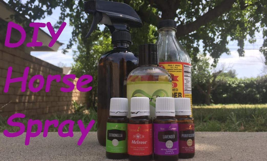 DIY Horse Spray  That Actually Works!